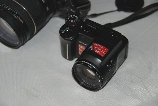 Exp505